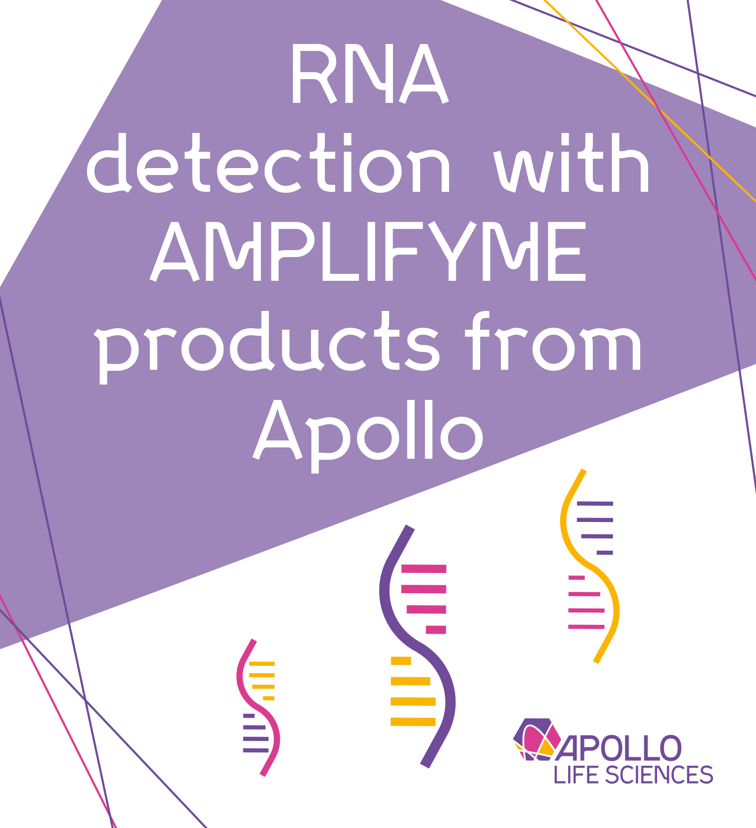 Improve RNA detection with AMPLIFYME products thumbnail image